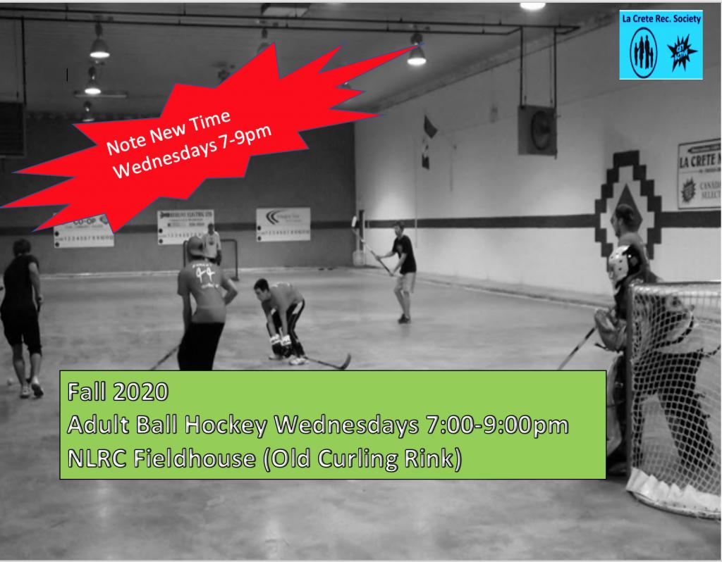 Adult ball hockey fall 2020 7-9pm wed